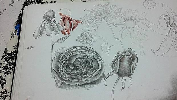 Sketchbook  by Dan Olszewski
