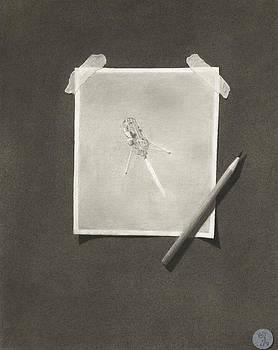 Sketching Xoie by C Sergent Lindsey