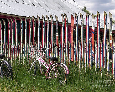 Ski Fence by Laurie Klein