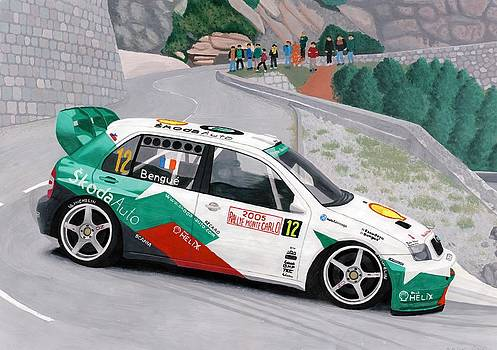 Skoda Fabia WRC Rally Car by Milan Surkala