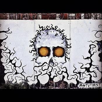 Skull Art by Kerri Green