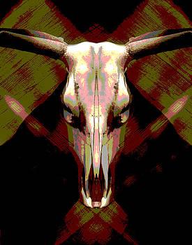 Skull by Barry Shereshevsky