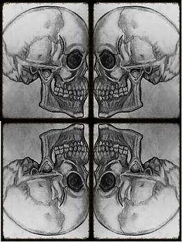 Skull drawing by Lee Farley
