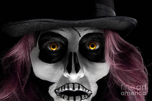 Skull Face by Sharon Dominick