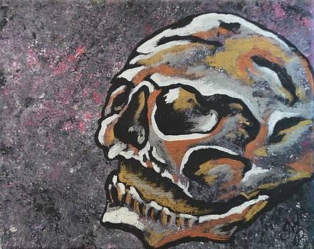 Skull by Meganne Peck