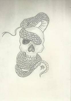 Skull Sketch by Saleem Baig