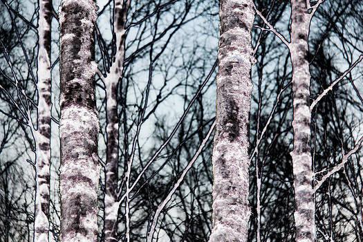 Skutskar 005 by Per Lidvall