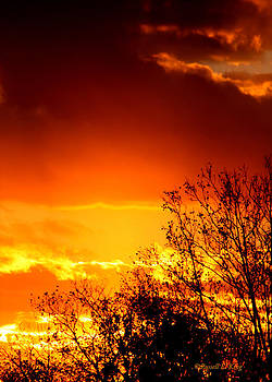 Sky Ablaze by Russell  King