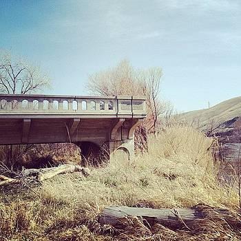 Sky Bridge by Rebecca Guss