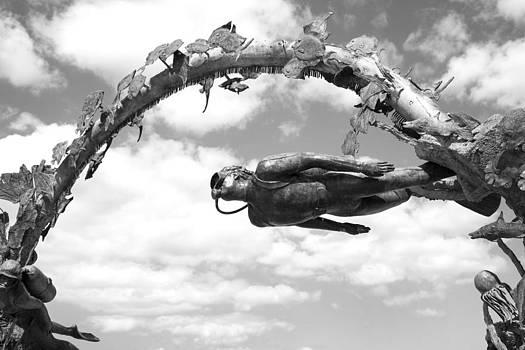 Ramunas Bruzas - Sky Diving