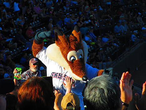 Sky Fox Mascot and Fans by Elaine Haakenson