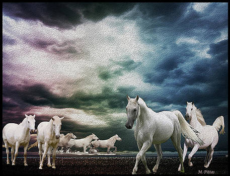 Sky Horses by Michael Pittas