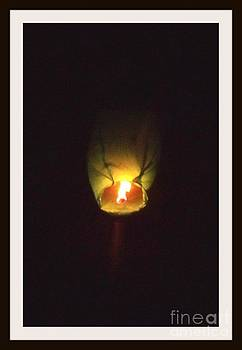 Gail Matthews - Sky Lantern Soars
