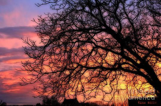 Sky on fire by Jackie Mestrom