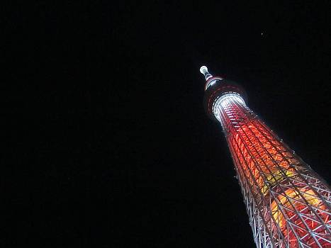 Sky Tree by M Gabo