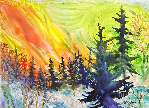 Skyfire by Betsy Bear