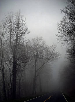 Skyline Drive in Fog by Greg Reed