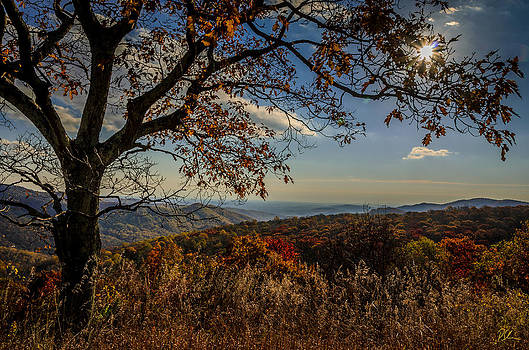 Skyline Drive by Pat Scanlon