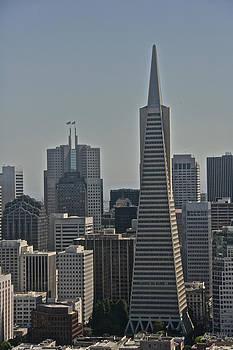 Steven Lapkin - Skyline San Francisco