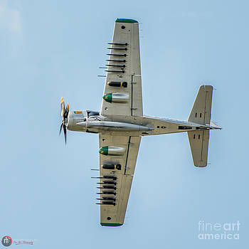 Skyraider belly by Rob Heath