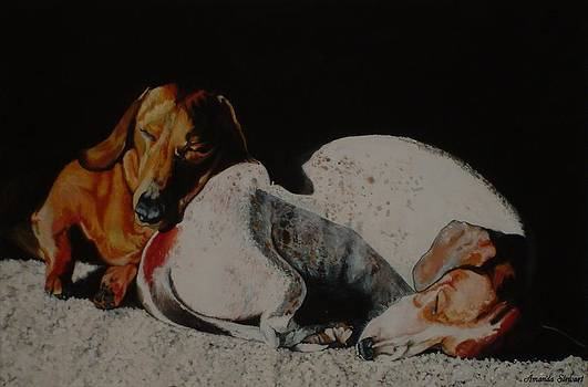 Sleeping Dachshunds Dogs by Amanda Hukill