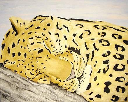 Sleeping Leopard by J P