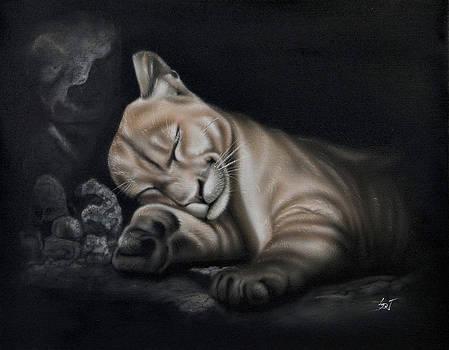 Sam Davis Johnson - Sleeping Lion