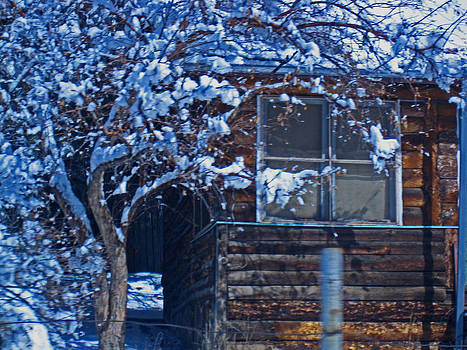 Sleepy Cabin In Beulah by Tammy Sutherland