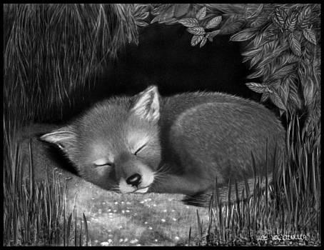 Sleepy Hollow by Miki Krenelka