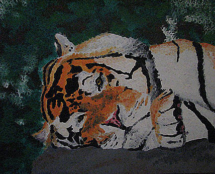 Sleepy Tiger by Megan Hughes