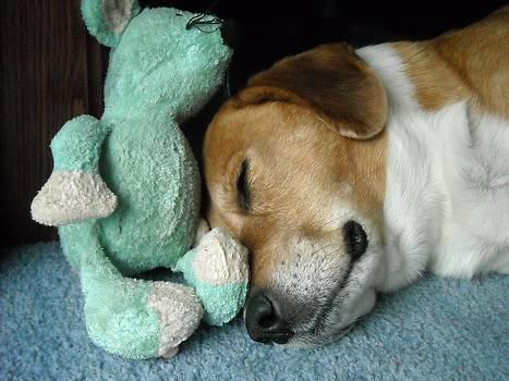 Sleepy Time Snug by Liz Lare