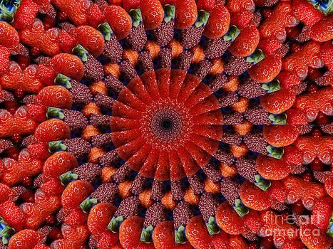Sliced strawberries kaleidoscope by Dana Hermanova
