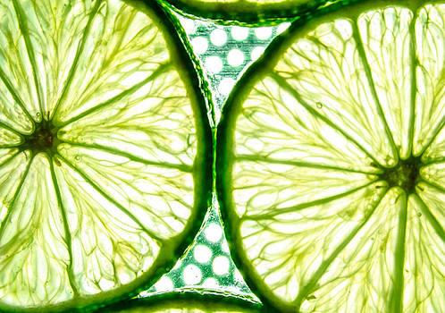 Slices of lemon. by Slavica Koceva