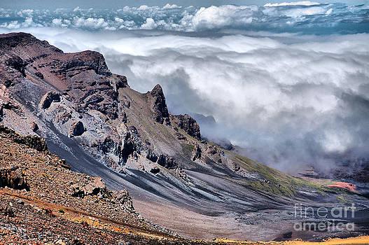 Slopes of Haleakala by John Kenolio
