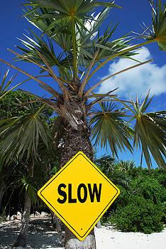 Ramunas Bruzas - Slow Life