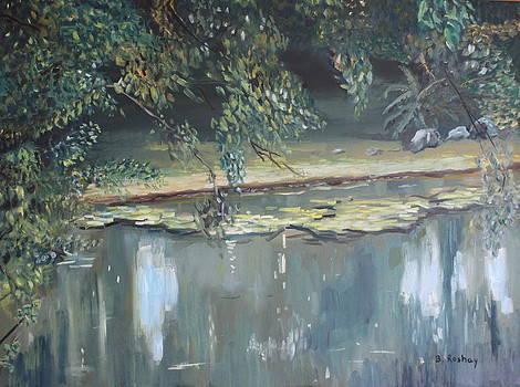 Slow river by Brigitte Roshay