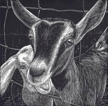 Slow Turtle Farm Goats by Jennifer Harper