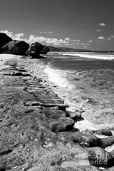 Darcy Michaelchuk - Small Barbados Waves BW