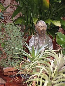 Small Buddha by Scott Shaw