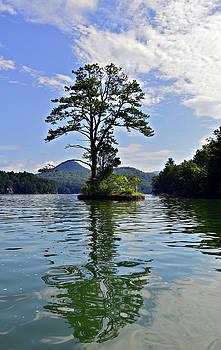 Small Island by Susan Leggett