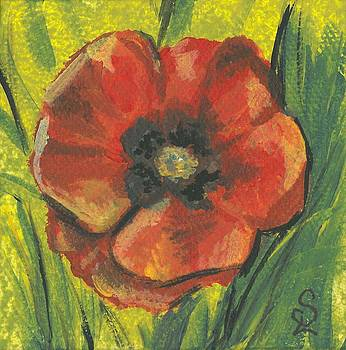Small Poppy Flower by Sarah Lowe