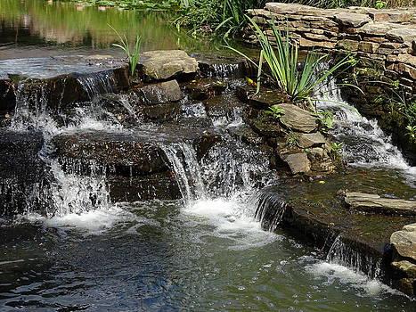Joe Marotta - Small Waterfalls