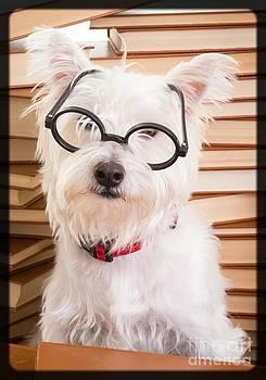 Edward Fielding - Smart Doggie