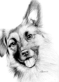 Smiling Puppy by Kayleigh Semeniuk