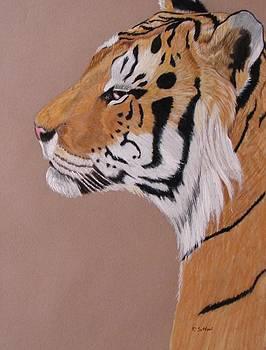 Smirking Sumatran by Lea Sutton