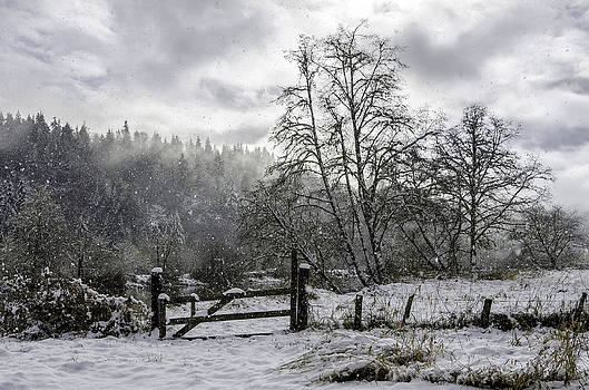 Smith River Snow by Chris Malone