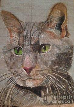 Smokey's portrait  by Brigitte Emme