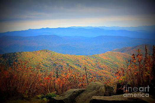 Smokies in the Autumn by Cynthia Mask
