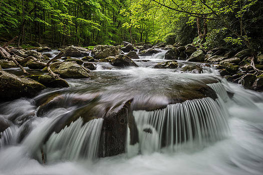 Smokies Spring by Mike  Walker