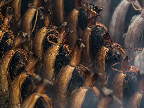 Hakon Soreide - Smoking Fish